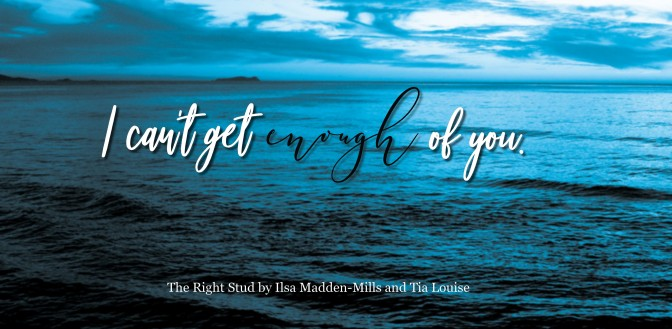 The Right Stud by Ilsa Madden-Mills and Tia Louise Review